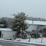 winter_snow_035