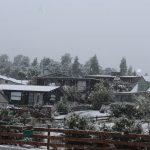winter_snow_047